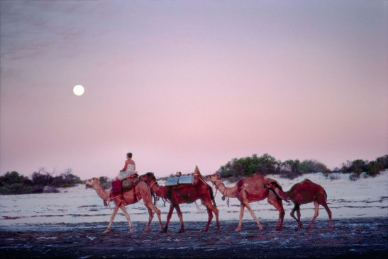 Rick Smolan's beautiful 1977 images of Robyn Davidson in the Australian Outback inspired the visual tone of the movie Tracks. © 2014 Rick Smolan, Against All Odds Productions II