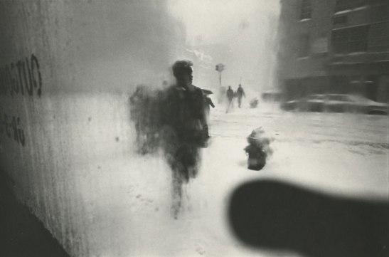 Leiter_Snow