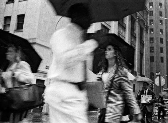 Stein_Umbrella