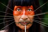 A Mayoruna Indian. The Mayoruna are also known as Matsés, or Cat People, for the spikes they insert in their faces.